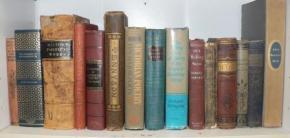 Poeme de Carmen Veronica STEICIUC, Ioan Tudor IOVIAN, Violeta ION, Crista BILCIU, Daniel D.MARIN